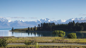 Lake Tekapo, New Zealand Stock Image