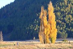 Lake Tekapo,South Island New Zealand. Stock Images