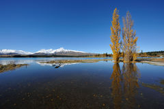 Lake Tekapo in south New Zealand Stock Photos