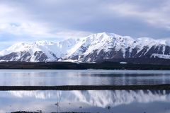 Lake Tekapo in Winter Royalty Free Stock Photography