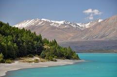 Lake Tepako headland stock images