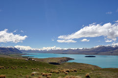 Lake Tepako panorama. This view is on the walk from Mount John to Lake Tepako in New Zealand (south island alps Stock Image