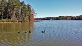 Lake Thom-A-Lex. A small but scenic lake located in Davidson County, North Carolina, the name comes from the towns of Thomasville and Lexington, the two cities stock photos