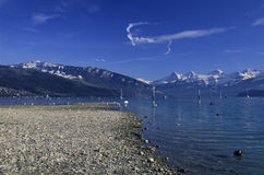 Lake Thun, fine arts Stock Image