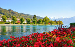 Lake Thun with Jungfrau mountain in autumn on clear blue sky , S Royalty Free Stock Photography