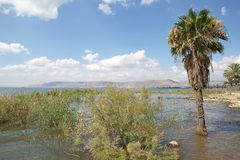 Lake Tiberias Royalty Free Stock Photography