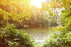 Lake in tiergarten berlin Stock Images