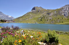 Lake of Tignes and flowers in France Stock Photos