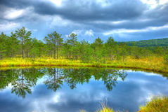Lake in tinovul mohos HDR.jpg Stock Photography