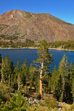 Lake Tioga on pass in warm serene autumn day Royalty Free Stock Image