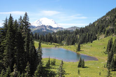 Lake Tipsoo and Mount Rainier Stock Image