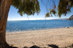 Lake Titicaca. A view on lake Titicaca from the beach, Bolivia stock photos