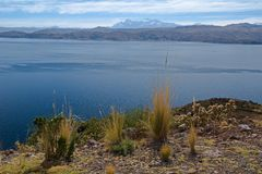 Lake Titicaca in Bolivia Stock Image