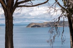 Lake Titicaca islands. Taken through bare tree branches by sunny day royalty free stock image
