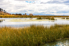 Lake Titicaca,South America, located on border of Peru and Bolivia. It sits 3,812 m above sea level Stock Photos