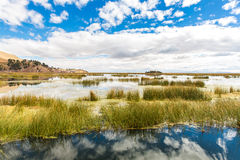 Lake Titicaca,South America, located on border of Peru and Bolivia. It sits 3,812 m above sea level Royalty Free Stock Photography