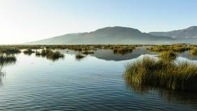 Lake Titikaka, Peru Stock Photography