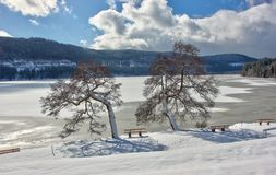 Free Lake Titisee In Winter. Black Forest, Germany. Royalty Free Stock Image - 111418416