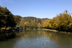 Lake at Tivoli Park in Ljubljana. Where a duck enjoys the fresh water and tourists enjoy free time at the restaurant. Tivoli Park is Slovenia's capital largest Royalty Free Stock Image