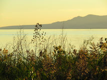 Lake to Mountain Stock Photos