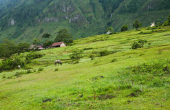 Lake Toba Countryside Royalty Free Stock Photos