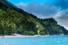 Lake Todos Los Santos. Shore of Lake Todos Los Santos, X Region, Chile Royalty Free Stock Photography