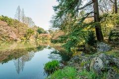 Lake in Tokyo Royalty Free Stock Images