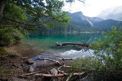 Lake Tovel in the Brenta Dolomites Royalty Free Stock Image