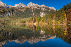 Lake Tovel, Italy Stock Photography