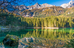 Lake Tovel, Italy Royalty Free Stock Image