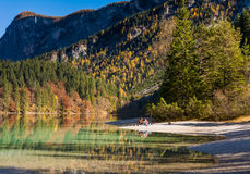 Lake Tovel, Italy Royalty Free Stock Photography