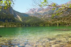 Lake Tovel Trentino Alto Adige, Italy. The crystal water of mountain lake Royalty Free Stock Photography