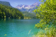 Lake Tovel Trentino Alto Adige, Italy. The crystal water of mountain lake Stock Images