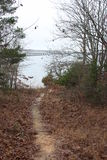 Lake Trail. This is at Lake Fork in Texas. The Bridge is the West bridge on 515. great bass fishing lake, if you don`t know Royalty Free Stock Photo