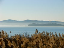 Lake Trasimeno, Italy. A view of lake Trasimeno in Umbria, Italy, in a foggy morning Royalty Free Stock Photography