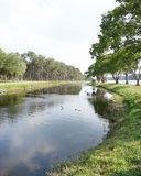 Lake and Treeline. Panoramic view of lake and tree line on both sides royalty free stock image