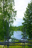 Lake through trees Stock Photo