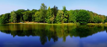 Lake and trees. The reflection of trees over a lake Stock Photos