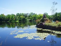 Lake And Trees. A lake / river with lily pads and trees in the background Stock Photography