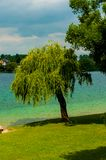 Lake with trees in austria. Lake in Austria with trees in the background green and blue royalty free stock image