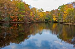 Lake and Trees in Autumn. A calm lake and colorful trees in the fall Royalty Free Stock Photography