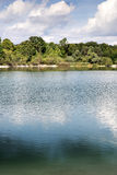 Lake with trees in Bavaria Royalty Free Stock Photography