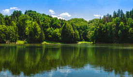 Lake and trees Royalty Free Stock Photography