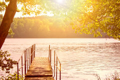 Lake and trees. Royalty Free Stock Images
