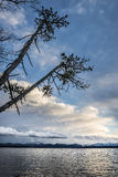 Lake with trees and clouds Stock Photography