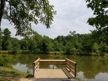 Lake with trees and green plants and pier Stock Photo