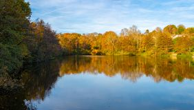Lake and trees landscape during the autumn stock photo
