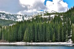 The Lake Before the Trees Before the Mountains royalty free stock images
