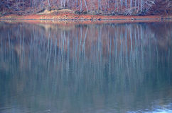 Lake. Trees reflected in the surface of the water Royalty Free Stock Photo
