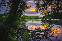 Lake and trees at sunset royalty free stock images